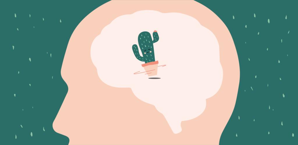Kaktus im Kopf bereitet Kopfchmerzen