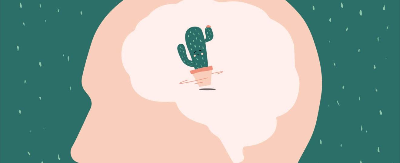 Header ueber den Kaktus